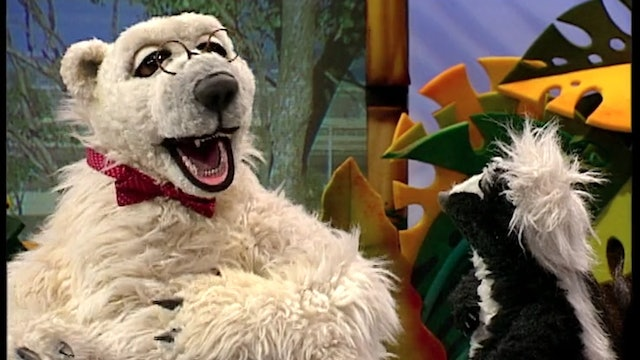 The Koala and the Ostrich