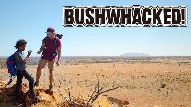 Bushwhacked!