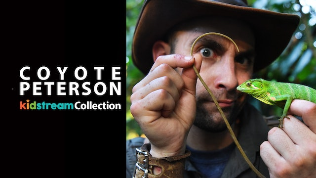 Coyote Peterson: Kidstream Collection