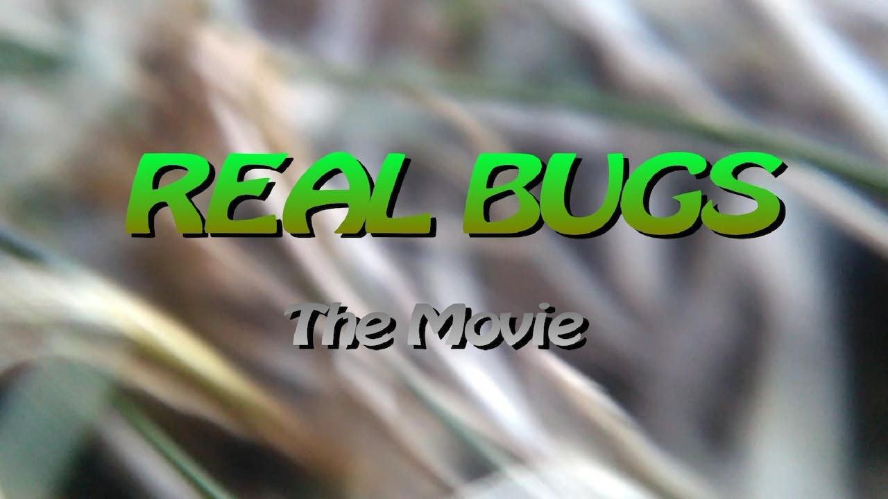 Real Bugs The Movie