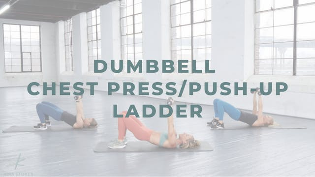 Dumbbell Chest Press/Push-up Ladder (...