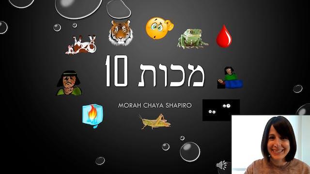 Morah Chaya - The Ten Makkos