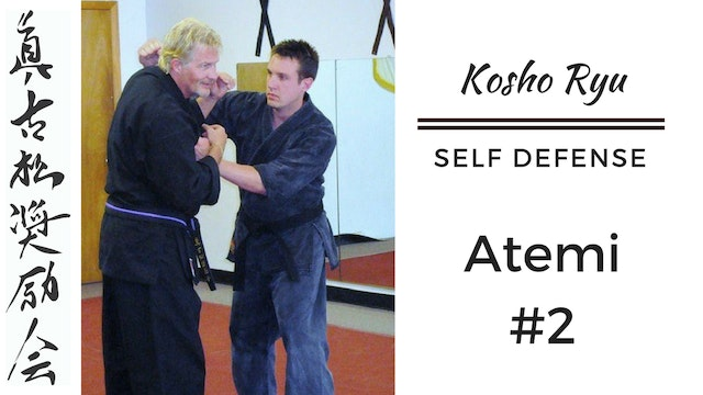 Self Defense Atemi #2