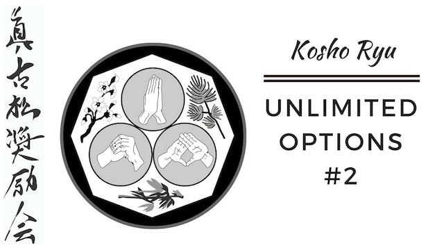Unlimited Options of Kosho Ryu #3