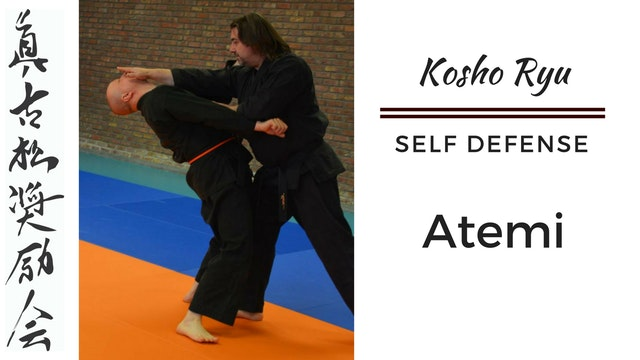 Self Defense - Atemi #1