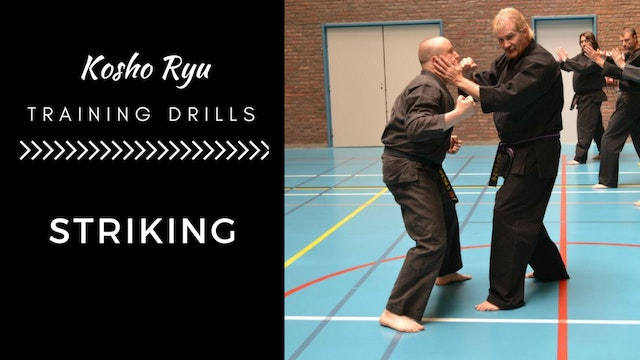 Training Drills for Striking