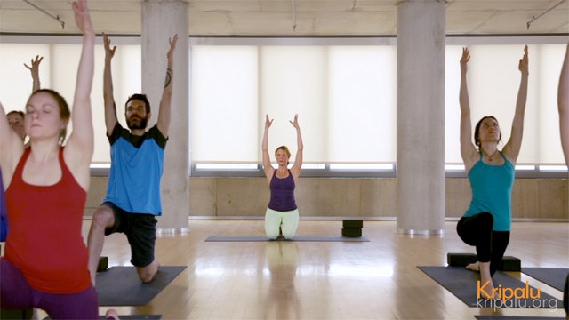 Nurturing Vinyasa Yoga Class