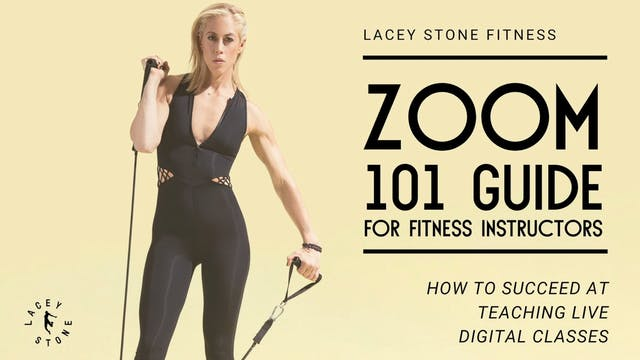 Zoom 101 Guide