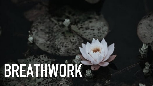 Breathwork with Victoria Sainsbury-Carter | Part 1