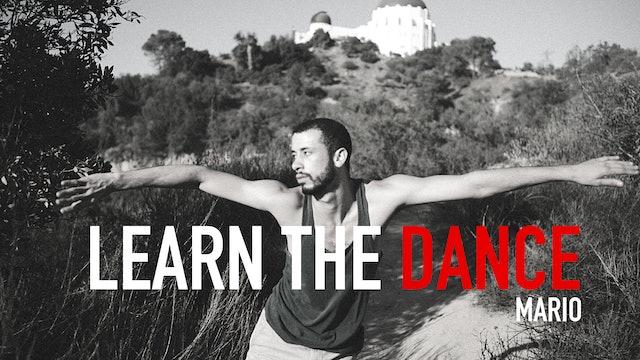 Mario Gonzalez   Learn the Dance
