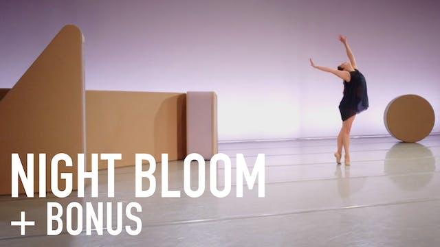 Night Bloom   Including Bonus Material