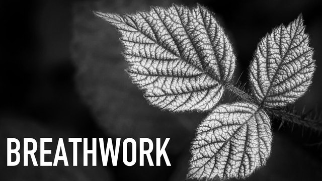 Breathwork with Victoria Sainsbury-Carter | Part 4