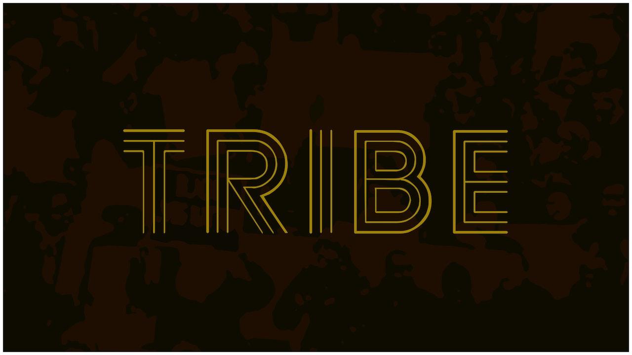 TRIBE (2020)