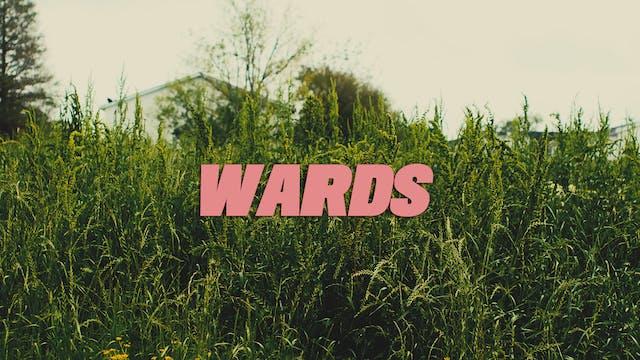 WARDS (2021) ▪️ Premieres Fall 2021