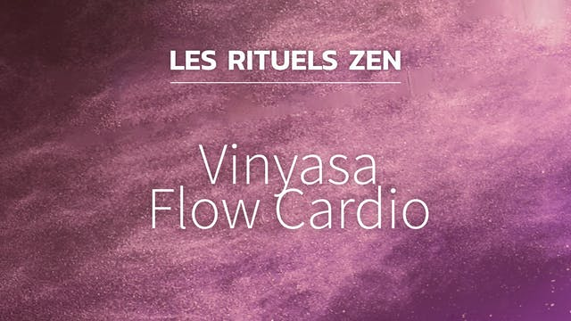 RZ#22 - Vinyasa Flow Cardio