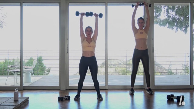 Quick Burn: 11-min Arms with Weights