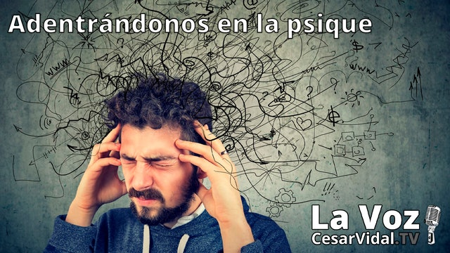 La ansiedad, tipos e intervención (2) - 25/11/20