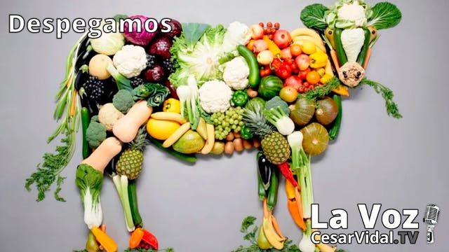 Dictadura alimentaria en tiempos del ...