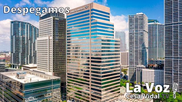 Autónomos en 'negro', la montaña rusa del bitcoin y Miami atrae a las 'Big Tech'