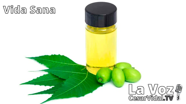 El árbol maravilla. El poderoso aceite de Neem (2) - 21/10/20