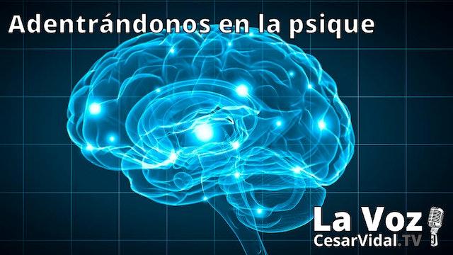 La neuropsicología de las emociones - 13/01/21