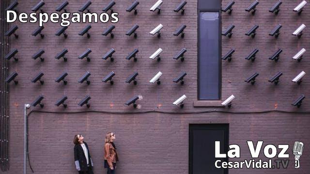 Terror laboral en España y  el capita...