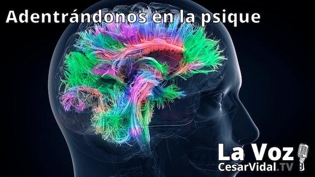La neuropsicología de las emociones (2) - 20/01/21