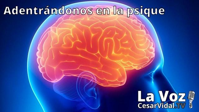 La neuropsicología de las emociones (3) - 27/01/21