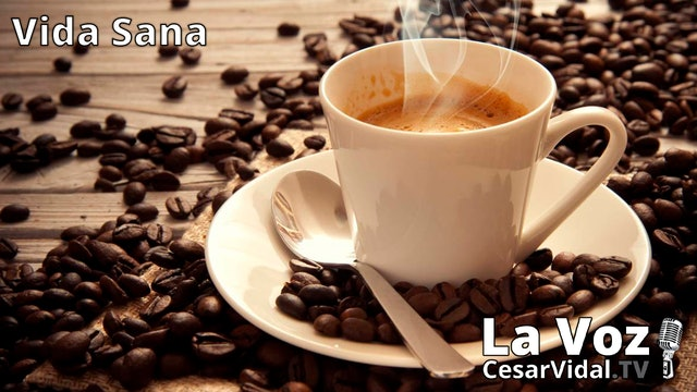 La historia del café - 25/11/20