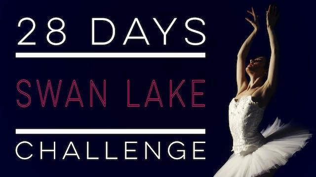 28 Days - Swan Lake Challenge