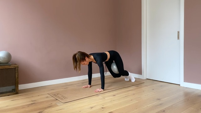 30 minute - Cardio core and Twisting series