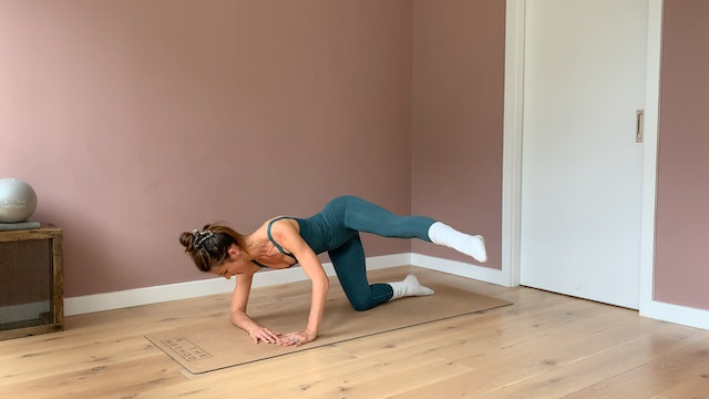 15 minute - Core and Lower body focused series #2