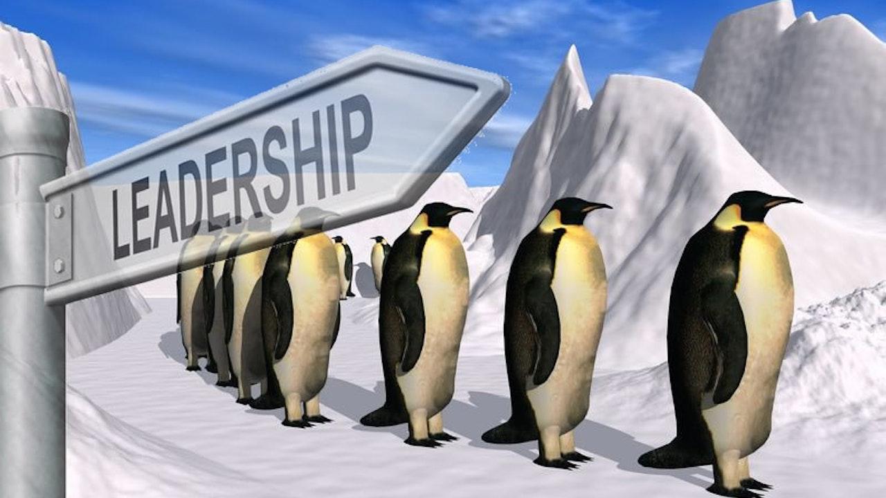 Free Leadership Videos