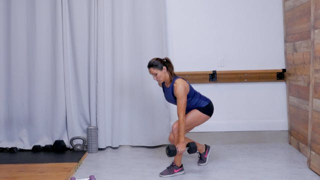 Iron Barre Select: Upper Body Rx IV