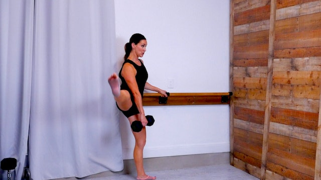 Iron Barre: Lower Body VIII
