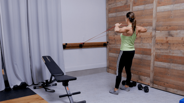 Upper Body and Core: Band + Weights I