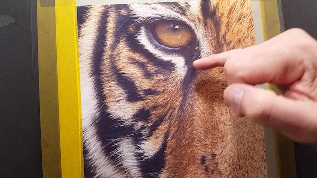 Airbrushing Tiger Textures (Part 1)