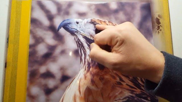 Airbrushing A Bird of Prey (Part 3)