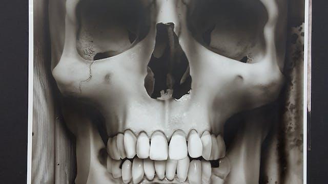 Beginner Skull - PART 2