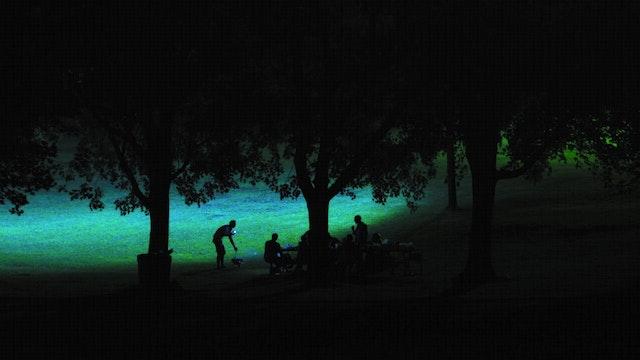 A SUMMER LOVE a film by Jean-François Lesage