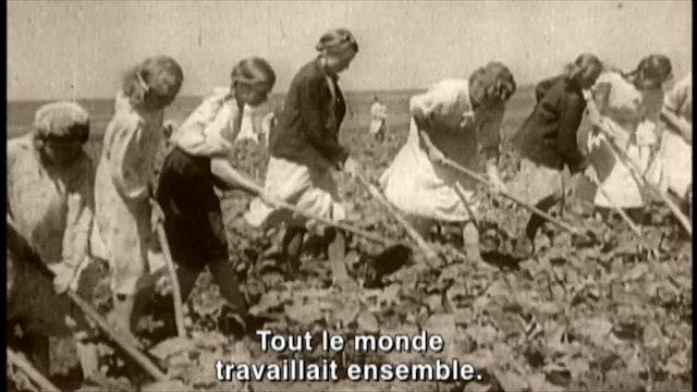 L'ARBRE AUX BRANCHES COUPÉES un film de Pascale Ferland