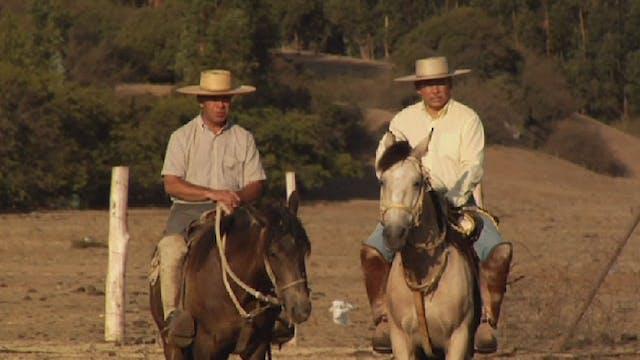 EL HUASO a film by Carlo Guillermo Proto