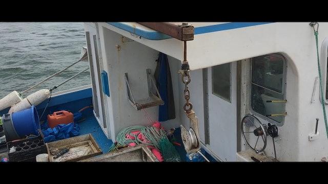 LES MAILLES DE L'OCEAN (FR) de Jessica C. & Hannah Lewis