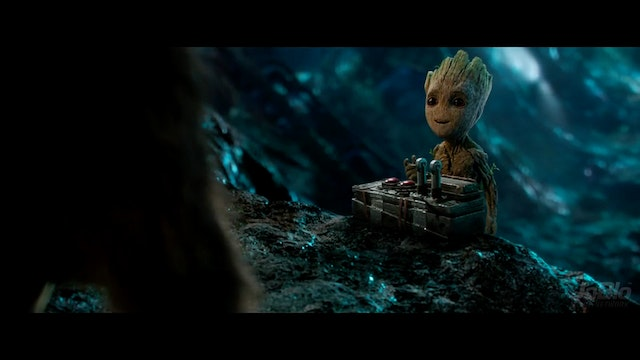Groot 40 - Change Test