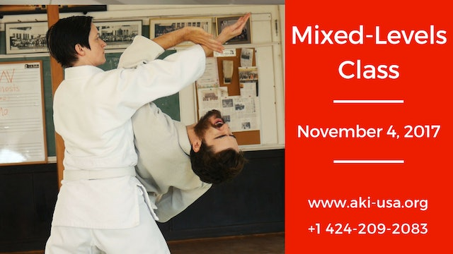 Mixed Levels Class: November 4, 2017