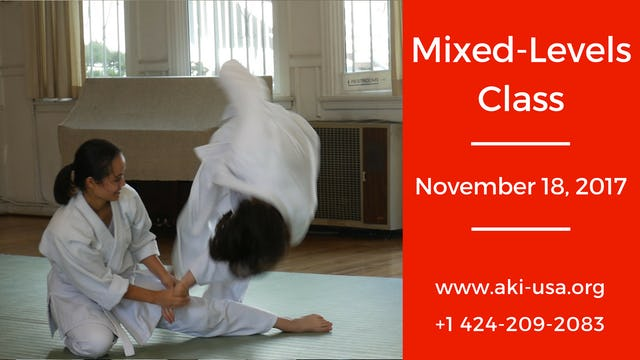 Mixed Levels Class: November 18, 2017