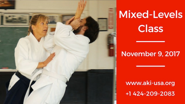 Mixed Levels Class: November  9, 2017