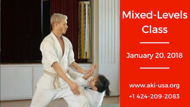Mixed Levels Class January 20 2018
