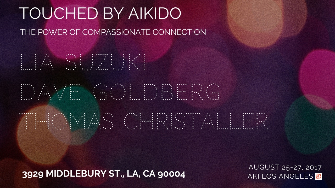 Touched By Aikido Seminar, 2017: Suzuki • Christaller • Goldberg - All 3 Instructors