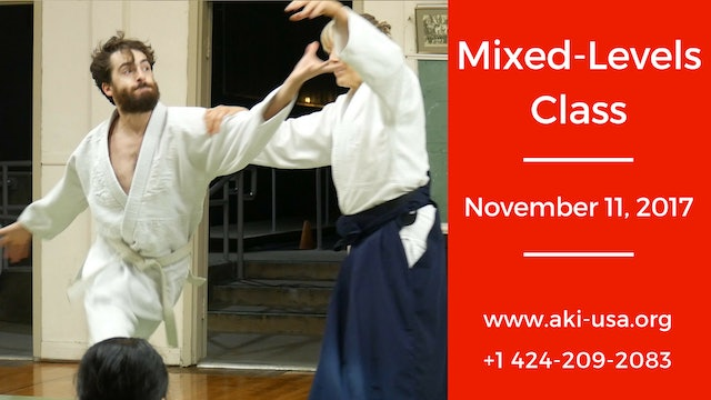 Mixed Levels Class: November  11, 2017